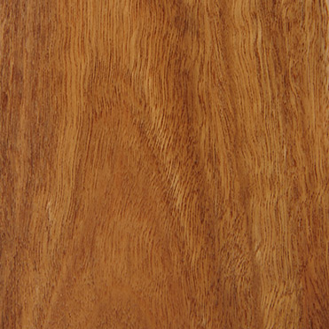 Spotted Gum Clear Poly