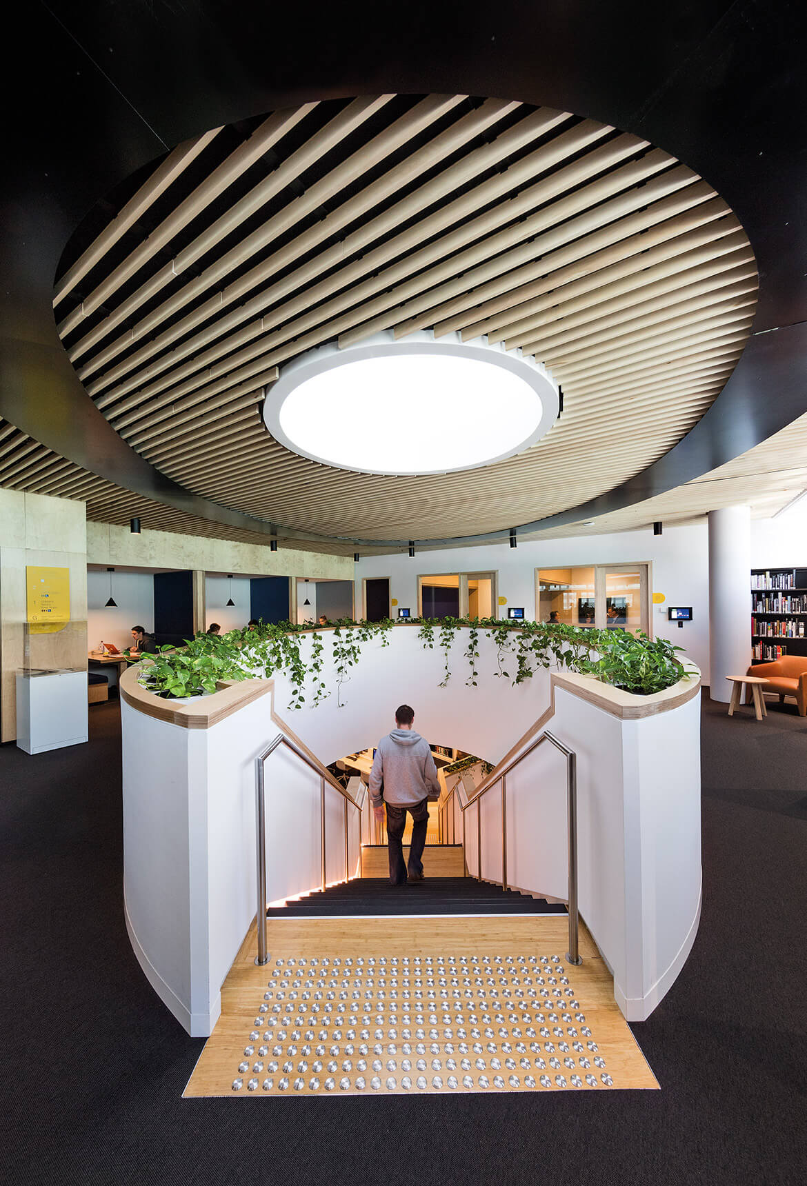 Sculptform Double Bay Library