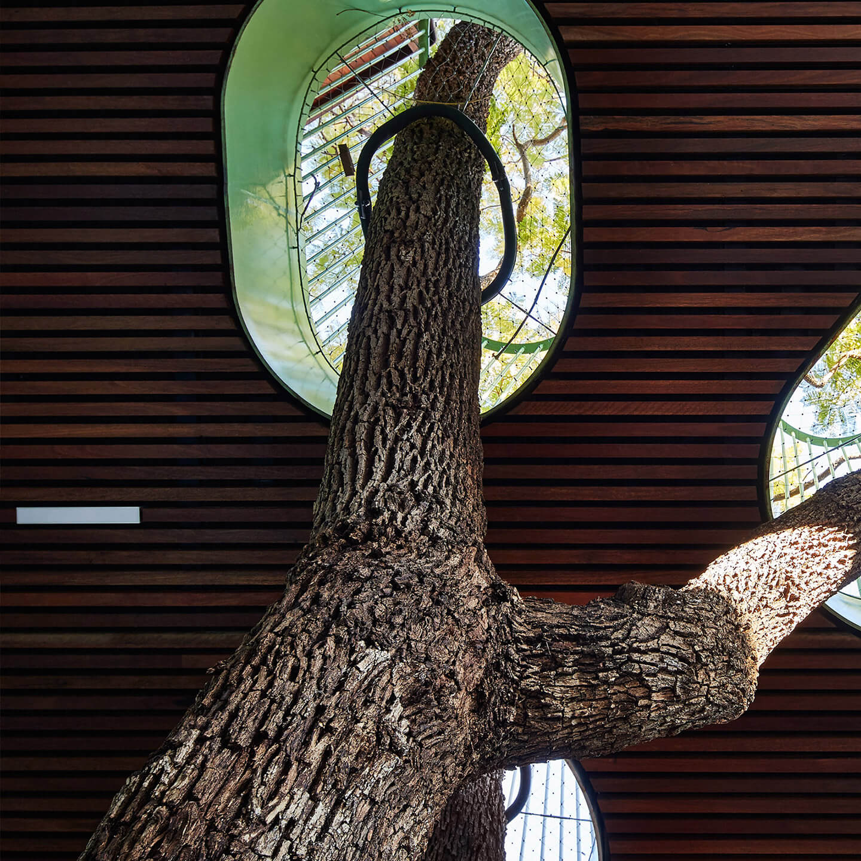 Timber Batten Ceilings