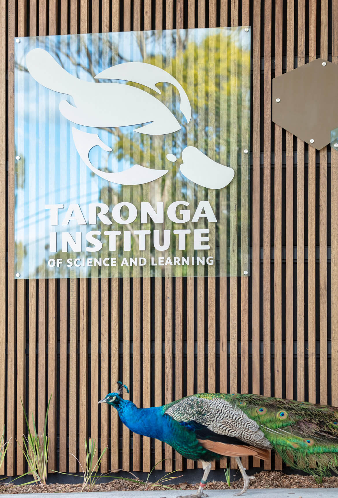 Taronga Zoo Institute of Science and Learning