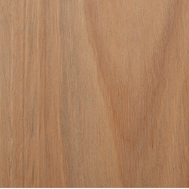 Spotted gum Rubio Pale Grey