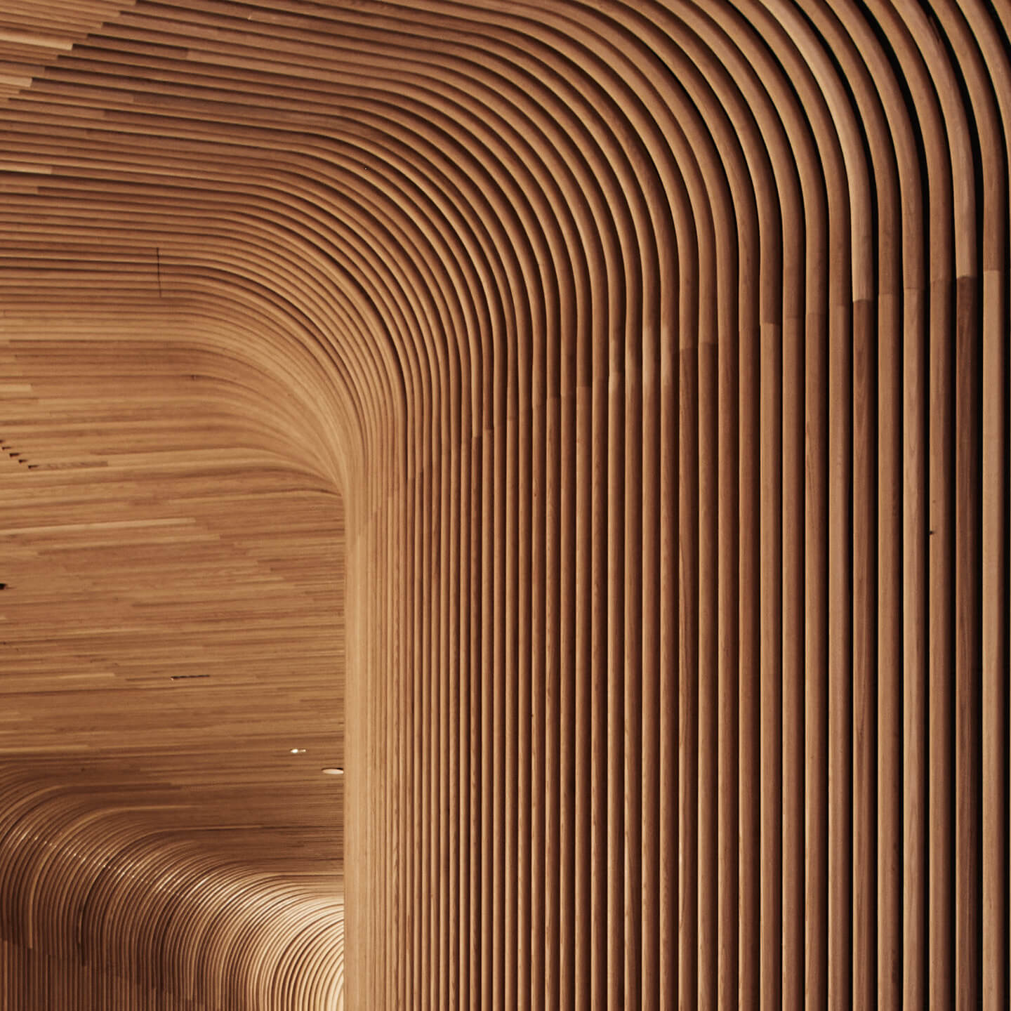 Curved Timber Steam bending